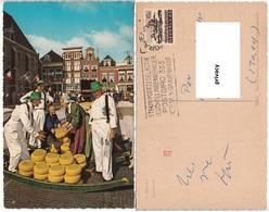 Paesi Bassi - Olanda - Alkmaar - Kaasmarkt. - Mercati