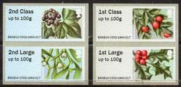 GREAT BRITAIN 2014 Post & Go: British Flora III. Winter Greenery - Great Britain