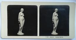 PHOTO STEREOSCOPIC STEREO THE FEMALE SINNER SÜNDERIN ART - Stereo-Photographie