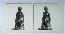 PHOTO STEREOSCOPIC STEREO PURITY KEUSCHHEIT ART PETER TERKATZ - Stereo-Photographie