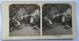 PHOTO STEREOSCOPIC STEREO 89 GENREBILDER FOLK FASHION 1904. - Stereo-Photographie