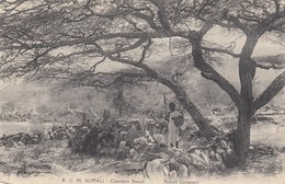 Postcard Cimetiere Somali Somali Cemetery My Ref  B13255 - Somalia