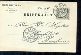 Schiedam - Daniel Maltha Lzn - Grossier - 1902 - 1891-1948 (Wilhelmine)