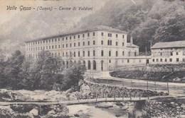 VALLE GESSO-CUNEO-TERME DI VALDIERI-CARTOLINA VIAGGIATA 1920-1930 - Cuneo
