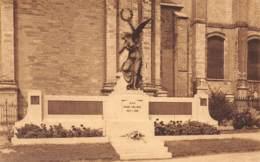 NINOVE - Aan Onze Helden - Monument De La Victoire - Ninove