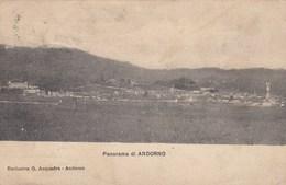 ANDORNO-BIELLA-PANORAMA-CARTOLINA VIAGGIATA  IL 26-2-1917 - Biella