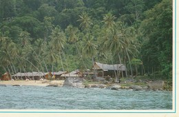 A Cluster Of Chalets At One Of The Beaches InTioman Island, Pahang, Malaysia - Malaysia