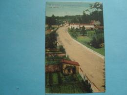 17 - Saintes - Nouveau Boulevard Des Arènes - 1932 - Saintes