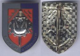 Insigne De L'Etablissement Régional Du Matériel De Gresswiller - Armée De Terre
