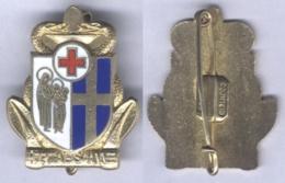 Insigne De L'Hôpital Maritime Ste Anne - Toulon - Services Médicaux