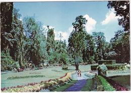 Peradeniya: Royal Botanic Gardens - (Kandy, Sri Lanka) - Sri Lanka (Ceylon)