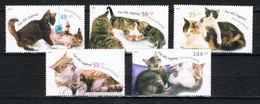Bund 2402/2406 Postfrisch - Jugend 2004, Katzen - Neufs