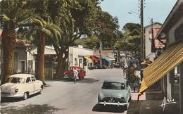 Var : HYERES : Les Palmiers - La Capte -  Le Village - Automobile : Dauphine - Panhard : ( C.p.s.m. - Photo Vérit. ) - Hyeres