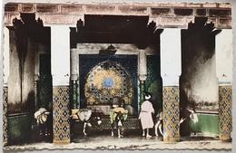 Cpsm Maroc FES Fontaine De Bab Guissa - Fez (Fès)
