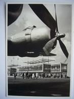 Avion / Airplane / SABENA / Douglas DC-6 / Seen At Brussels Airport - 1946-....: Era Moderna