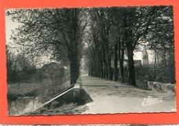 45  .AUGERVILLE  La  RIVIERE  . Le  Pont  -  L ' Allée  Et  L ' Entrée Du Château    .cpsm  9 X 14 - Other Municipalities