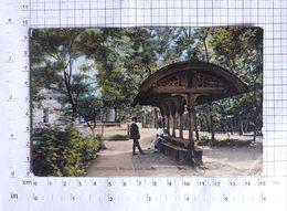 SLOVAKIA (than Austria-Hungary) - Csíz Fürdő (Kúpele Číž), Horvat Park -  Vintage POSTCARD - (APAT1-150) - Slovakia