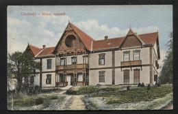 SLOVAKIA (than Austria-Hungary) - Csíz Fürdő (Kúpele Číž) -  Vintage POSTCARD - (APAT1-151) - Slovakia