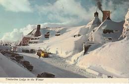 Timberline Lodge In The Winter, Mount Hood, Oregon - Stati Uniti