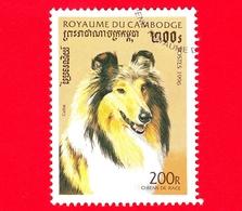CAMBOGIA - Nuovo Oblit. - 1996 - Cani - Border Collie (Canis Lupus Familiaris) - 200 - Cambogia