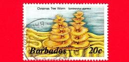 BARBADOS - Usato - 1986 - Coralli E Spugne - Christmas Tree Worm (Spirobranchus Giganteus) - 20 - Barbados (1966-...)