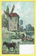 * Fantaisie - Fantasy - Fantasie * Molen, Moulin, Windmill, Muhle, Geit, Goat, Chèvre, Canal, Couleur, Rare, Old - Fantasie