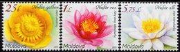 Moldova - 2019 - Flora - Water Lilies - Mint Definitive Stamp Set - Moldavia