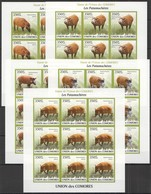 ZZ295 IMPERFORATE 2009 UNION DES COMORES FAUNA PIGS POTAMOCHERES !!! 9SET MNH - Francobolli