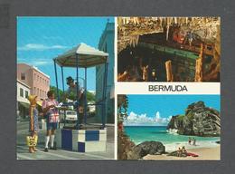 BERMUDES - BERMUDA - A SEMI TROPICAL ISLAND - PHOTO  BY JOHN HINDE - Bermudes