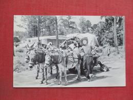 Orville Ewing Pritchett Colorado  Artist & Travler     Donkey Wagon    Ref 3372 - Animals