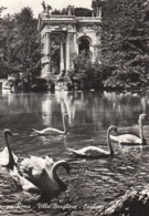Roma - Villa Borghese , Laghetto 1960 - Parks & Gardens