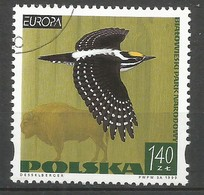 Polen / Polska 1999 Mi.Nr. 3763 - EUROPA CEPT Natur- Und Nationalparks - Gestempelt / Fine Used / (o) - Europa-CEPT