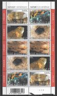 BELGIUM COB 3174/3178 ** - Nature  - Les Minéraux - Natuur - Mineralen - Feuillet De 10 Timbres - Minerals