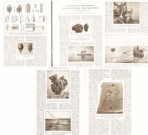 LA CULTURE DES EPONGES Sur Le LITTORAL MEDITERANEEN à ( SFAX  En TUNISIE   )  1923 - Altri