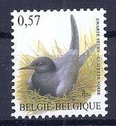 BELGIE * Buzin * Nr 3136 * Postfris Xx * FLUOR  PAPIER - 1985-.. Birds (Buzin)