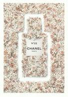 CHANEL   Dans Les Champs De CHANEL   Grande Belle Carte  (17 / 12 Cm ) **N° 22** R V / - Perfume Cards