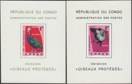 Congo Kin 1963 COB LX 488 Et 490. Oiseaux, Paon Et Serpentaire. Feuillets De Luxe, Serpent - Paons