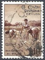 Ceylon, 1954 Harvesting Rice, 10r # S.G. 430 - Michel 276 - Scott 328  USED - Sri Lanka (Ceylon) (1948-...)