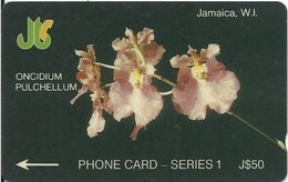 JAMAICA - ONCIDIUM PULCHELLUM - 6JAME - Jamaica