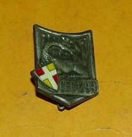 Centre D'Entraînement Commando 129 R.I, écu, épingle Sertie, FABRICANT DELSART SENS ,HOMOLOGATION 2526,  BON ETAT VOIR P - Armée De Terre