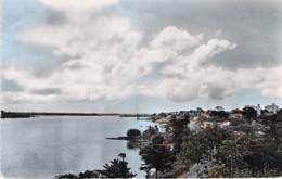 AFRIQUE NOIRE - COTE D'IVOIRE - ABIDJAN : Baie De COCODY Vue Du Jardin Public - CPSM Dentelée Colorisée PF- Black Africa - Ivory Coast
