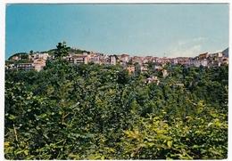 VALLEROTONDA - FROSINONE - PANORAMA - Frosinone
