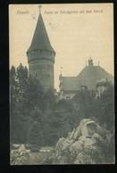 Oppeln Opole Schlesien Partie Im Schlossgarten Mit Dem Schloss Alfrd Zieger 1921 Tresor Et Postes - Schlesien