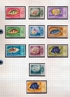 REPUBLIC OF MALADIVES 11 STAMPS NEW NEUF NIEUW - Maldive (1965-...)