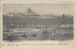 CPA Dept 34 MONTPELLIER Dos 1900 - Montpellier