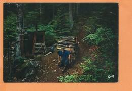 CPM - VENTRON - Le Schlittage - Andere Gemeenten
