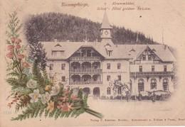 ALLEMAGNE . RIESENGEBIRGE . Krummhübel Schier's Hôtel Goldner Frieden (décor Floral Art Nouveau ) - Schlesien