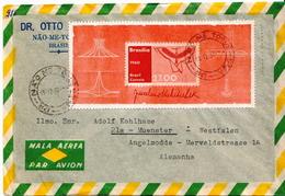 Postal History Cover: Brazil SS On Cover - Brasilien