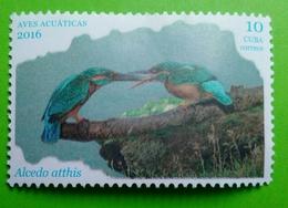 Cuba 2016 -'Aves Aquáticas. NEW - Cuba