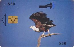 Télécarte à Puce ZIMBABWE - ANIMAL - OISEAU Rapace AIGLE PECHEUR - Chiphip Phonecard EAGLE BIRD -  ADLER - 4294 - Zimbabwe